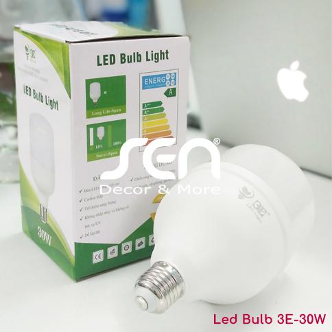 Den Led 3E Led Bulb 3E-30W 01